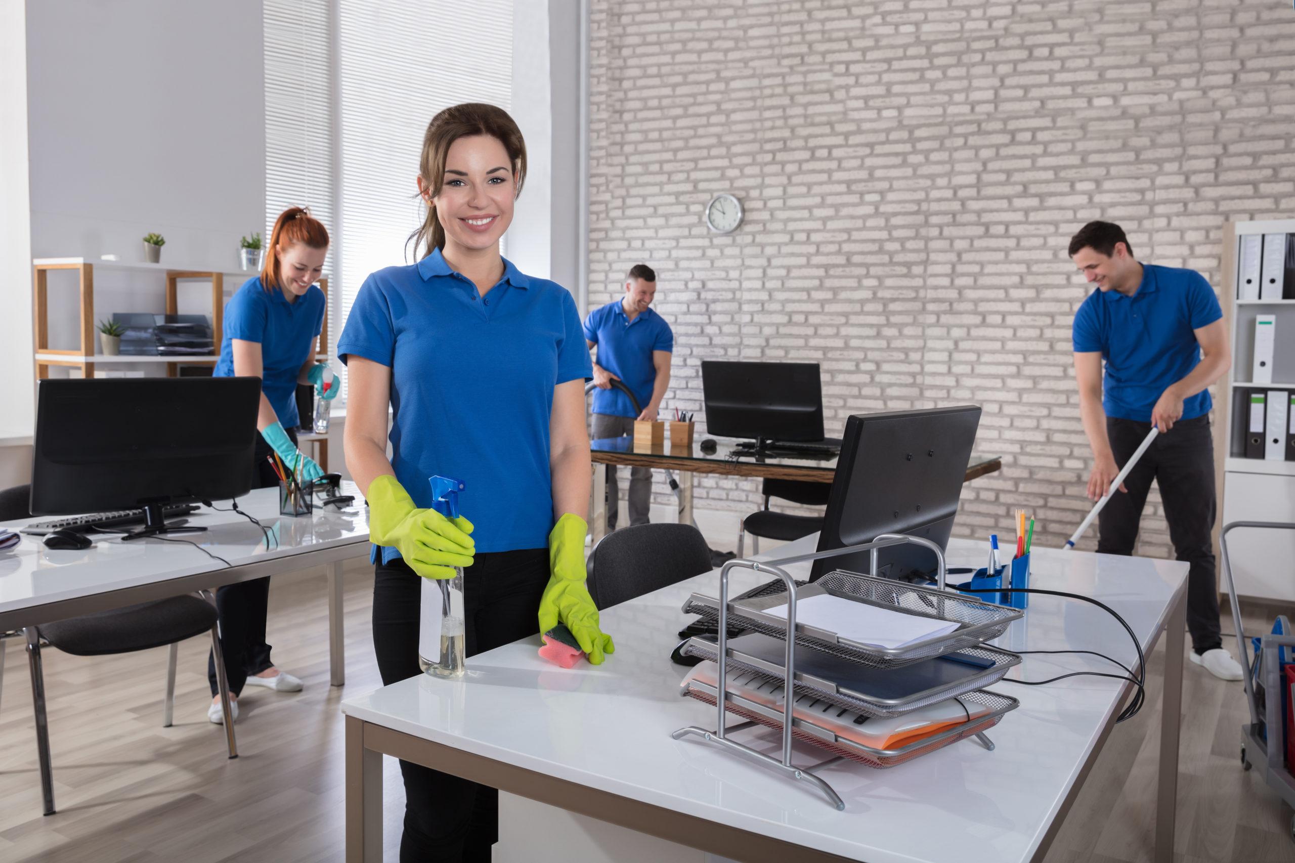 professional cleaning and sanitizing Bonney Lake